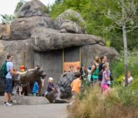 Biggest Zoos in the World