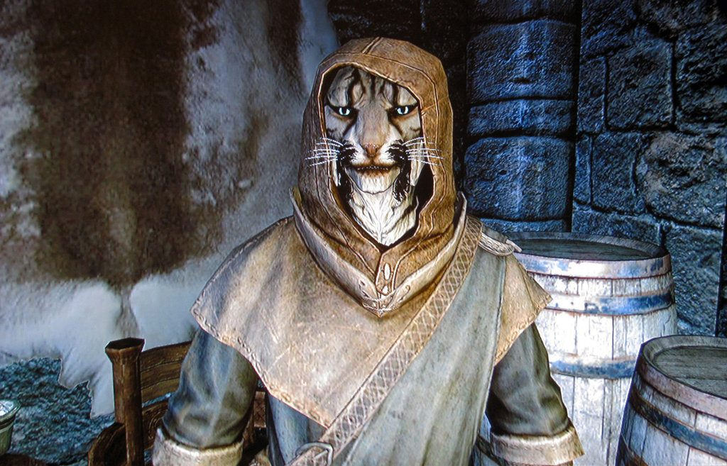 Best Skyrim Followers - J'Zargo