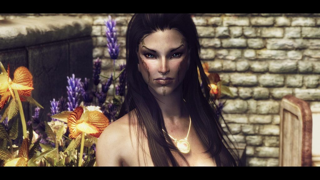 Skyrim Best Followers - Jenassa
